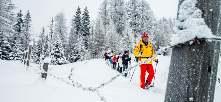 Winterwandern & Wellness